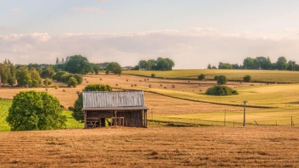 Frases sobre inversiones en finca raíz rural