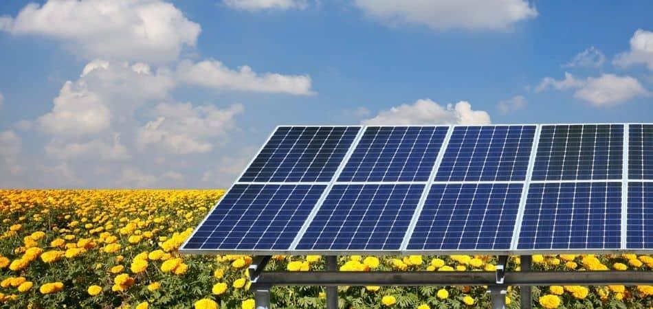 ganar dinero en un terreno generando energía